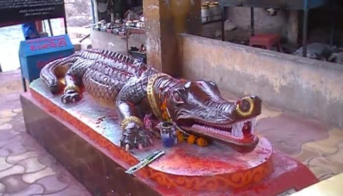 Photos : ગુજરાતના આ મંદિરમાં માતાજીનું ત્રિશૂળ દર વર્ષે વધે છે તેવું કહેવાય છે
